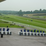 All eyes on Lexington Times for championship at Lingfield Park